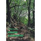 Pfälzer Sagenhaftes - Sagen und Geschichten aus der Pfalz von Gerhard Kreuter