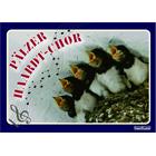 Pälzer Haardt Chor - Pfalz Postkarte